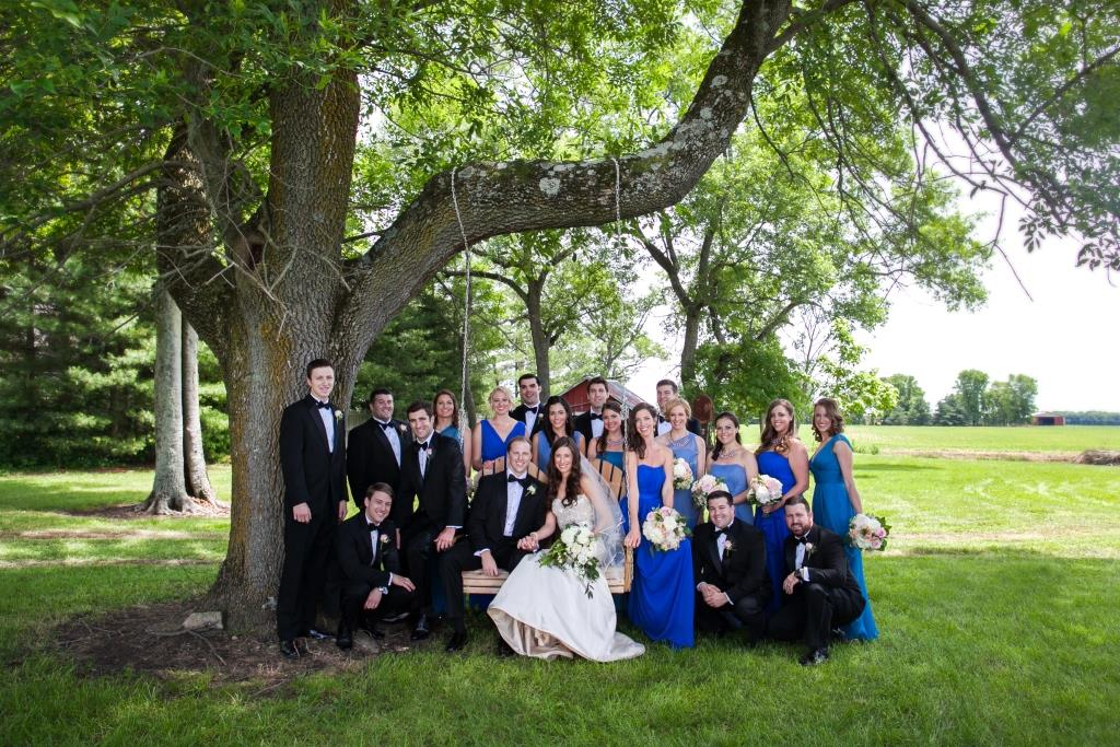 blue bridal party
