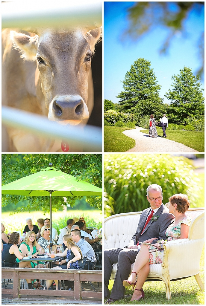 Cocktail hour Farm Wedding